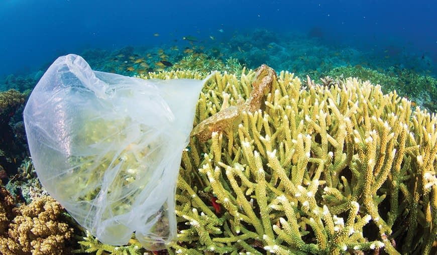 , Costa Rica, the first country to ban single-use plastic, The Circular Economy
