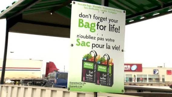 , Moncton students support ban on single-use plastic bags – New Brunswick | Globalnews.ca, The Circular Economy