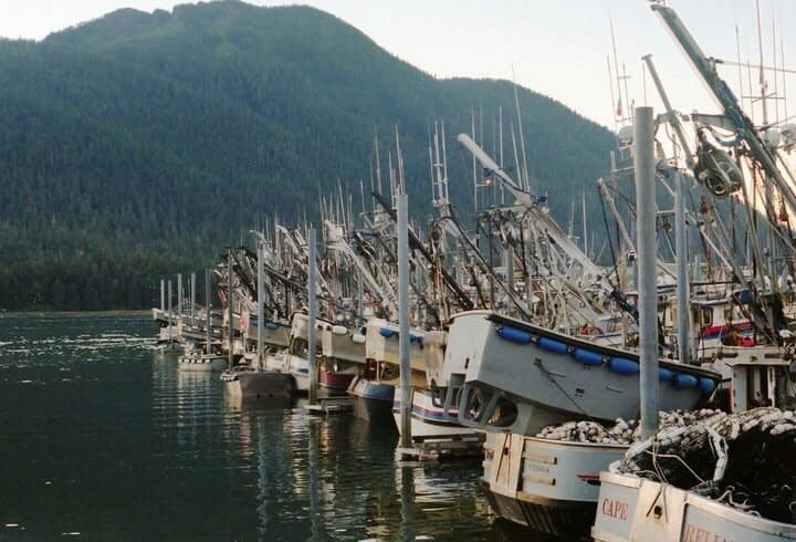 , Commercial Fishing, Sustainability and Environmental Impact –, TheCircularEconomy.com
