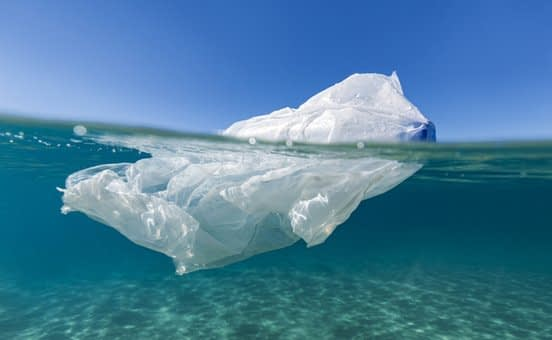 , New York Officially Bans Single-Use Plastic Bags, The Circular Economy
