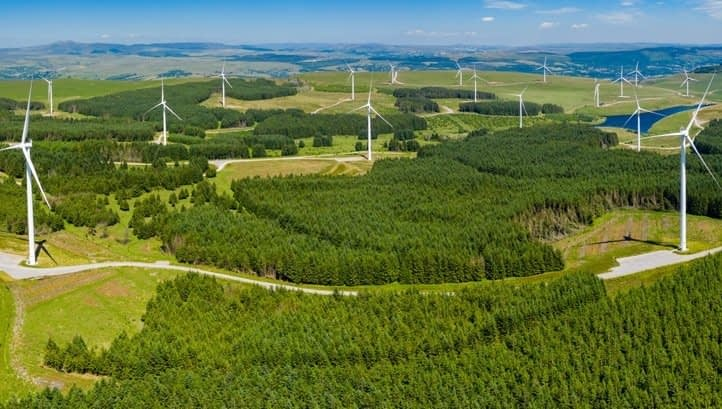 , A 'vital step': Green economy reacts to the UK's new climate commitment, TheCircularEconomy.com
