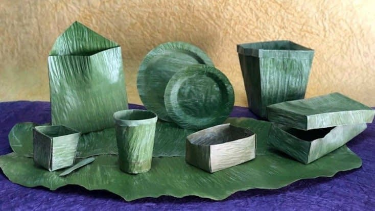 , This Company Is Replacing Single-Use Plastics With Banana Leaves, TheCircularEconomy.com