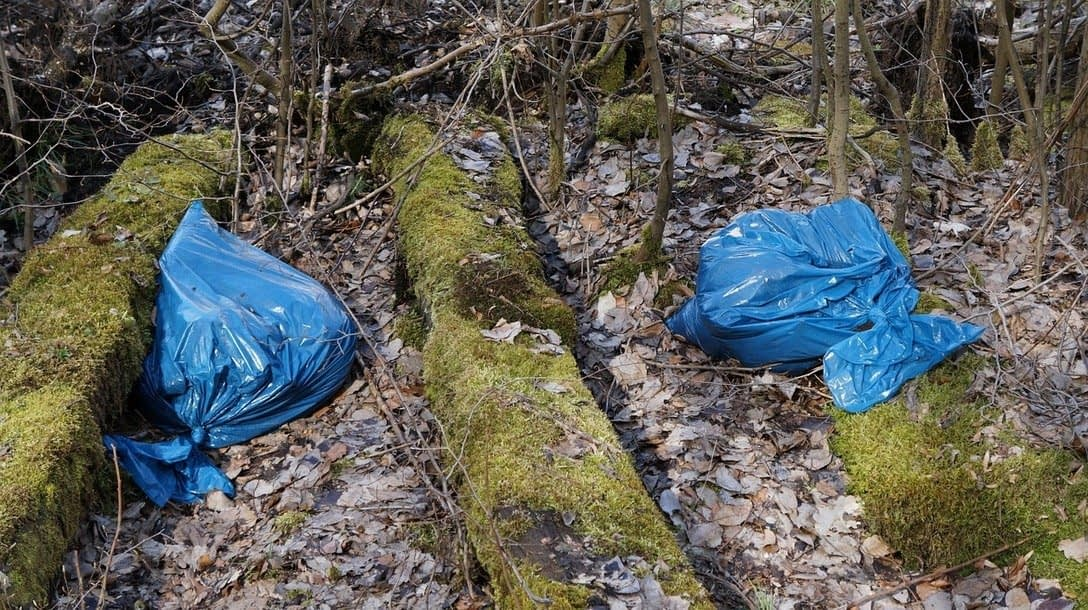 , Opinion: Say No to Single Use Plastic Bags, TheCircularEconomy.com