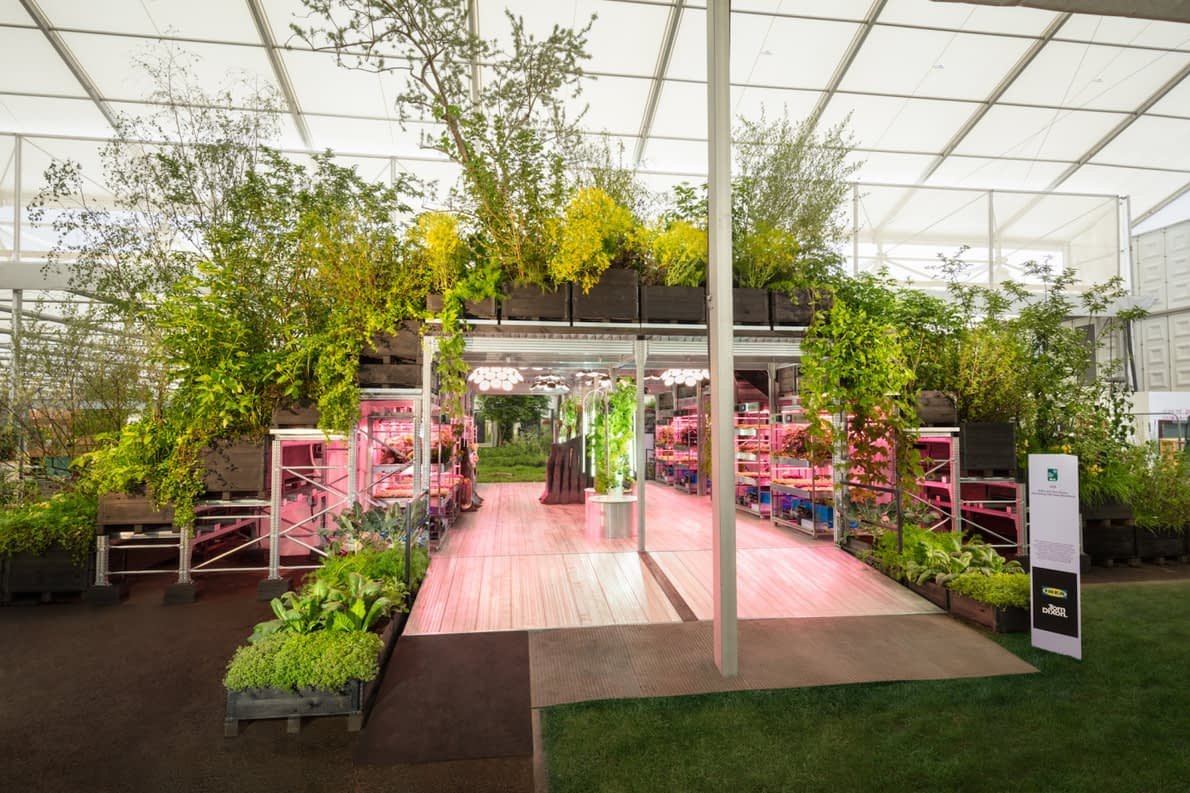 , How IKEA Is Democratizing Gardening To Build A More Sustainable Future, TheCircularEconomy.com