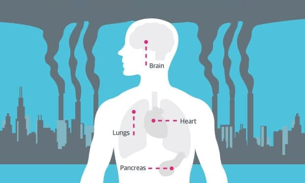 , How air pollution affects your health, TheCircularEconomy.com