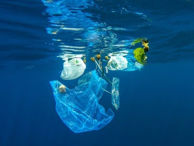 , Unintended consequences: Is design the new single-use plastic?, The Circular Economy
