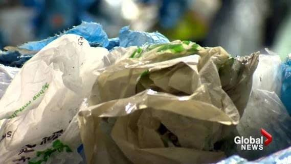 , Retail reps disappointed with 'lack of provincial leadership' in N.B. on single-use plastics, The Circular Economy