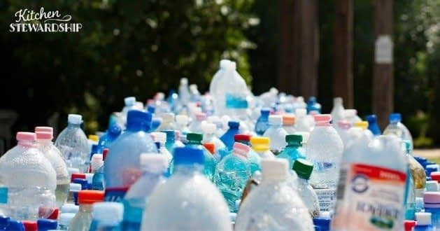 , Reducing Single-Use Plastic Food Packaging, The Circular Economy