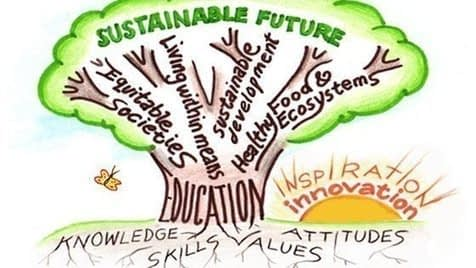 , Pétition · California Grades K-12 Should Have A Required Class on Sustainability ·, The Circular Economy