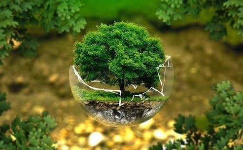 , UBS makes sustainability push with new hire, TheCircularEconomy.com