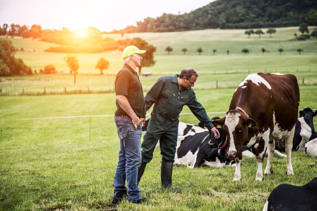 , Arla builds sustainable future on one of the world's largest sets of climate data, TheCircularEconomy.com