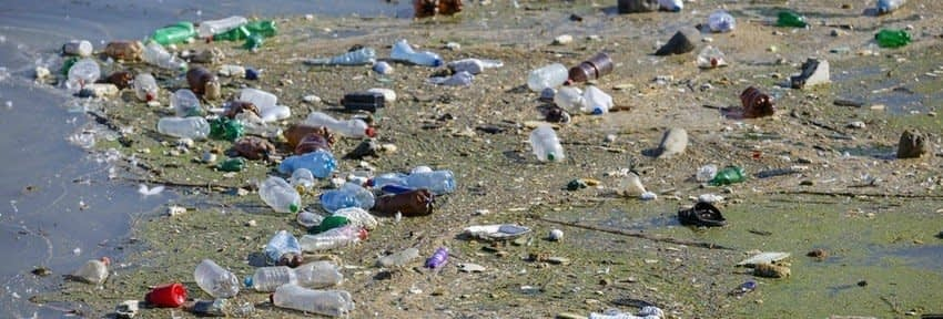 , Press Canada To Catch Up To Europe in a Ban on Single-Use Plastic, TheCircularEconomy.com