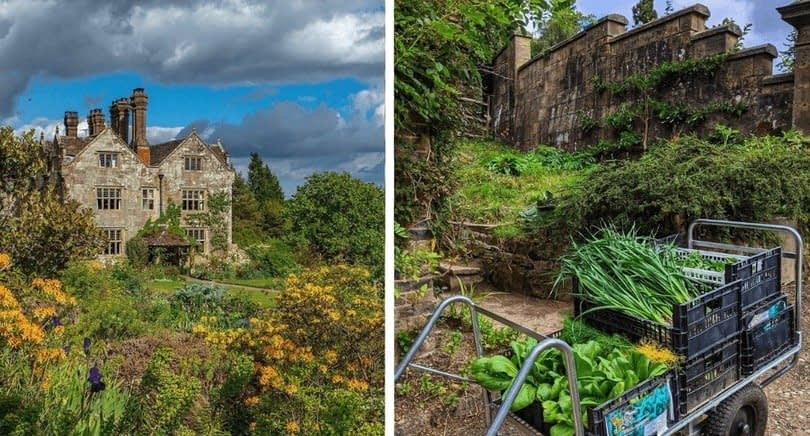 , 6 UK Hotels With Kitchen Gardens for a Sustainable Getaway, TheCircularEconomy.com