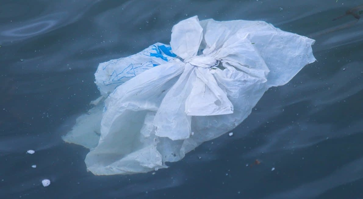 , Canada is Banning Single-Use Plastic Bags, Straws, and Cutlery Next Year, TheCircularEconomy.com