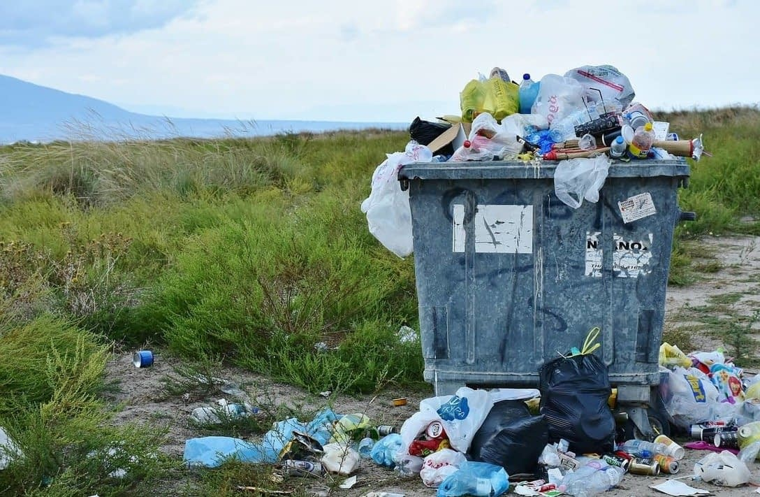 , Alternatives to single-use items to save the environment, The Circular Economy