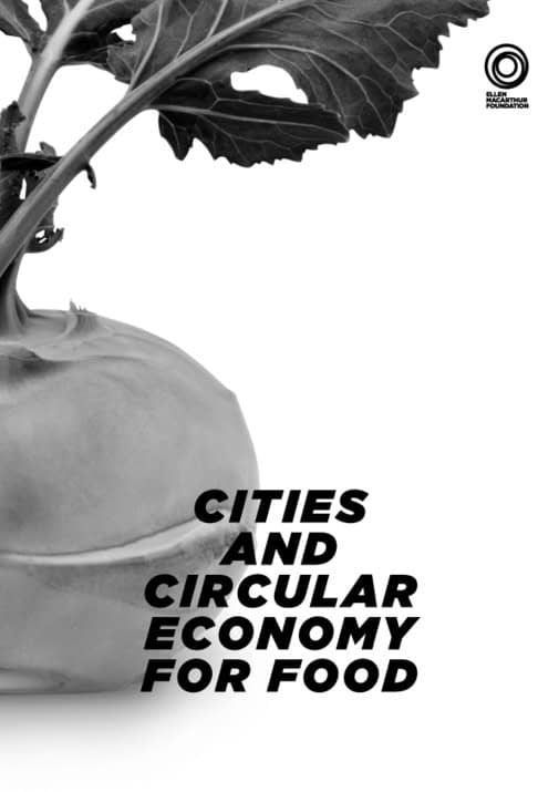 , Cities and Circular Economy for Food, The Circular Economy
