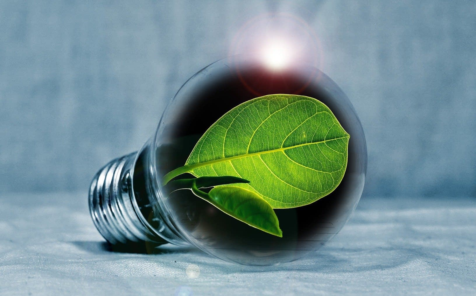 , Techstars and The Nature Conservancy are accepting applications for Sustainability Accelerator, TheCircularEconomy.com