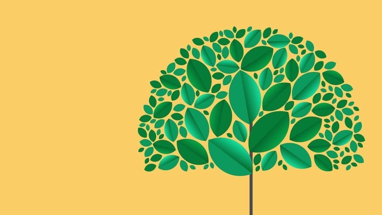, Why sustainability reporting matters, TheCircularEconomy.com