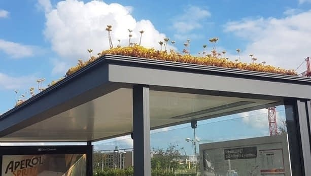 , Toyota's solar Prius and bee-friendly bus stops: The sustainability success stories of the week, TheCircularEconomy.com
