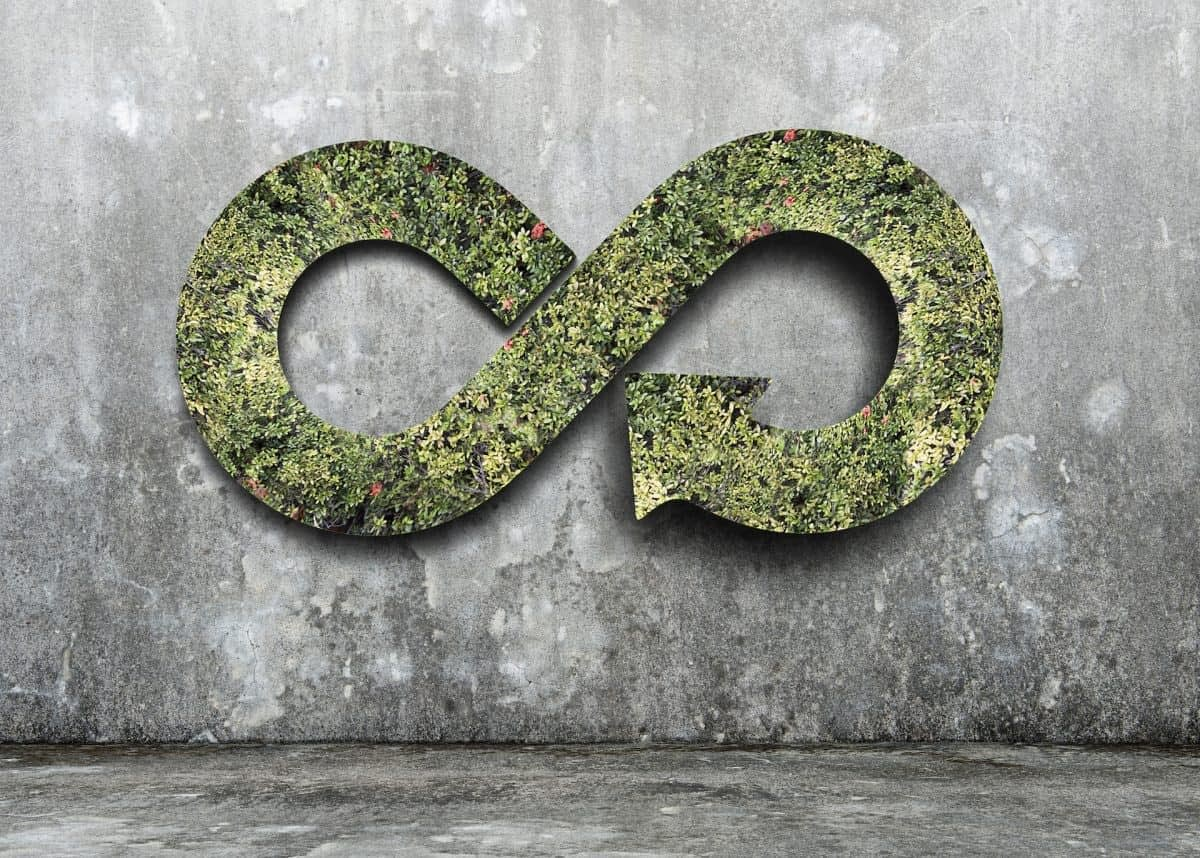 , What is a Circular Economy, and how does it look in 2020?, The Circular Economy