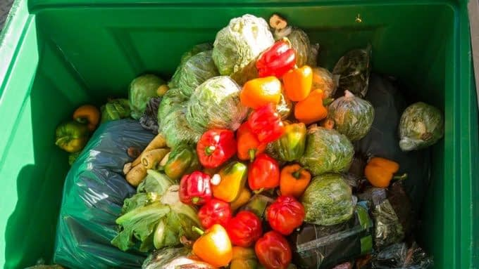 , More focus needed on food waste in the creation of a circular economy, The Circular Economy