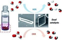 , Facile synthesis of C60-nano materials and their application in high-performance water splitting electrocatalysis – Sustainable Energy & Fuels (RSC Publishing), TheCircularEconomy.com