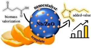 , Exploring the potential of biomass-templated Nb/ZnO nanocatalysts for the sustainable synthesis of N-heterocycles – ScienceDirect, The Circular Economy