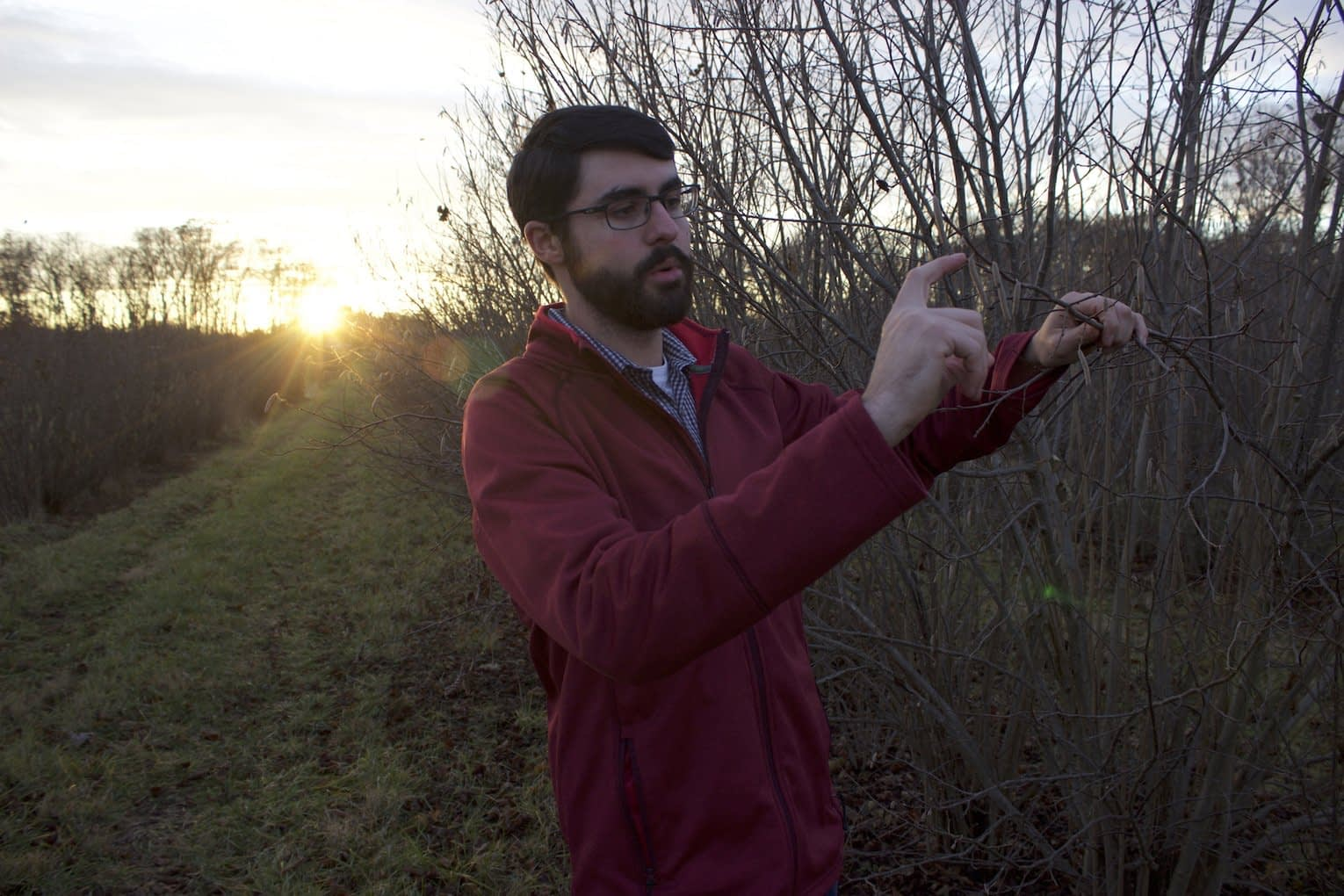 , Profit, sustainability lead to hazelnuts experiment in N.J. farming, TheCircularEconomy.com