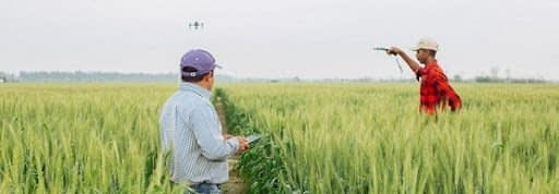, FAO –News Article:Europe and Central Asia call for more sustainable and innovative agriculture, TheCircularEconomy.com
