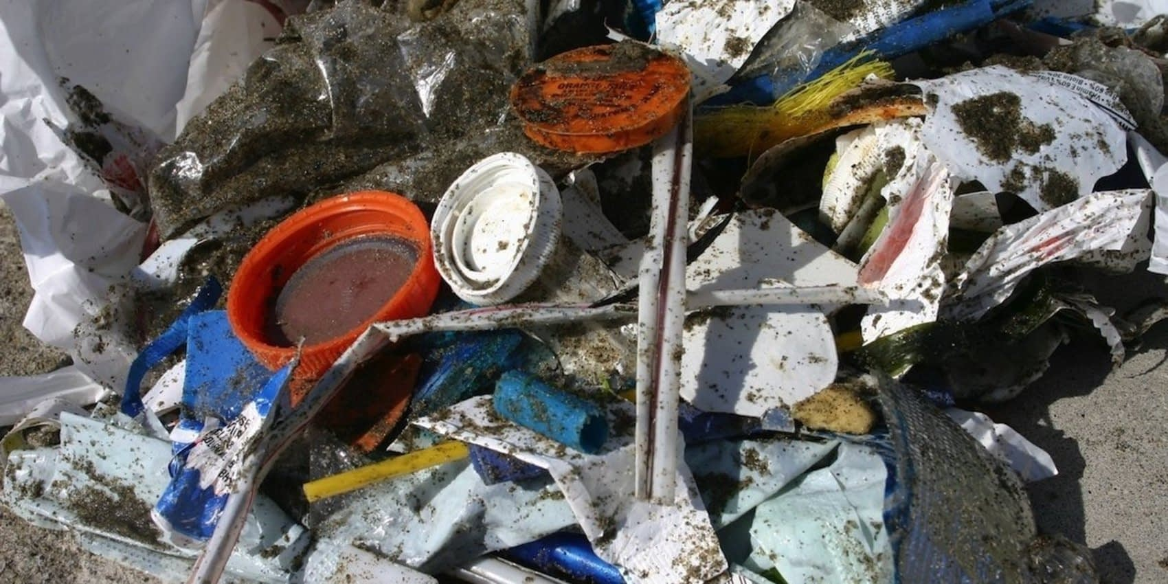 , SeaWorld, American Express, Fast Food Chains to Curb Single-Use Plastics, TheCircularEconomy.com