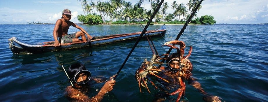 , SSF Guidelines|Voluntary Guidelines for Securing Sustainable Small-Scale Fisheries|Food and Agriculture Organization of the United Nations, TheCircularEconomy.com