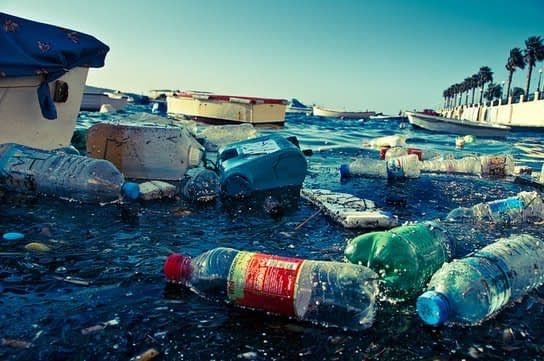 , Applaud Dominica for Strict Single-Use Plastic Ban –, The Circular Economy