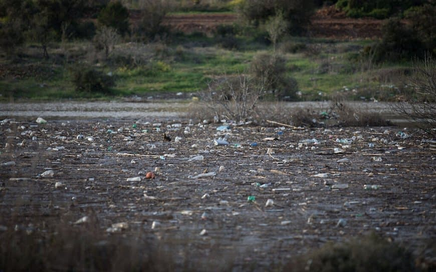 , Most Israelis support ban on single-use plastic tableware, TheCircularEconomy.com