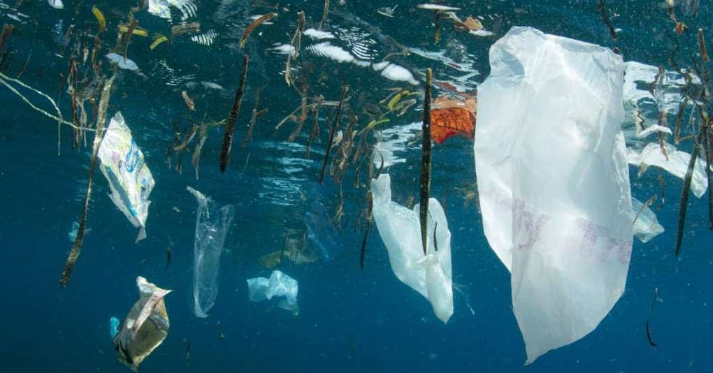 , India's Plastic Industry Demands Clarity On Single-Use Plastic Ban, TheCircularEconomy.com
