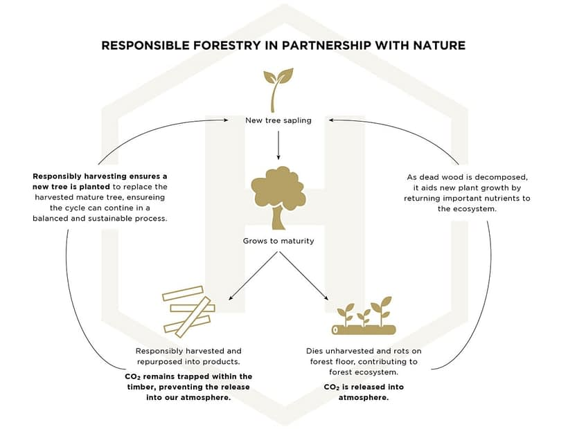 , Sustainability and Timber, The Circular Economy