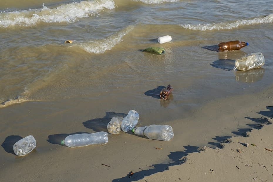 , Single-use plastic waste in seas 'under reported' as immediate ban demanded, The Circular Economy