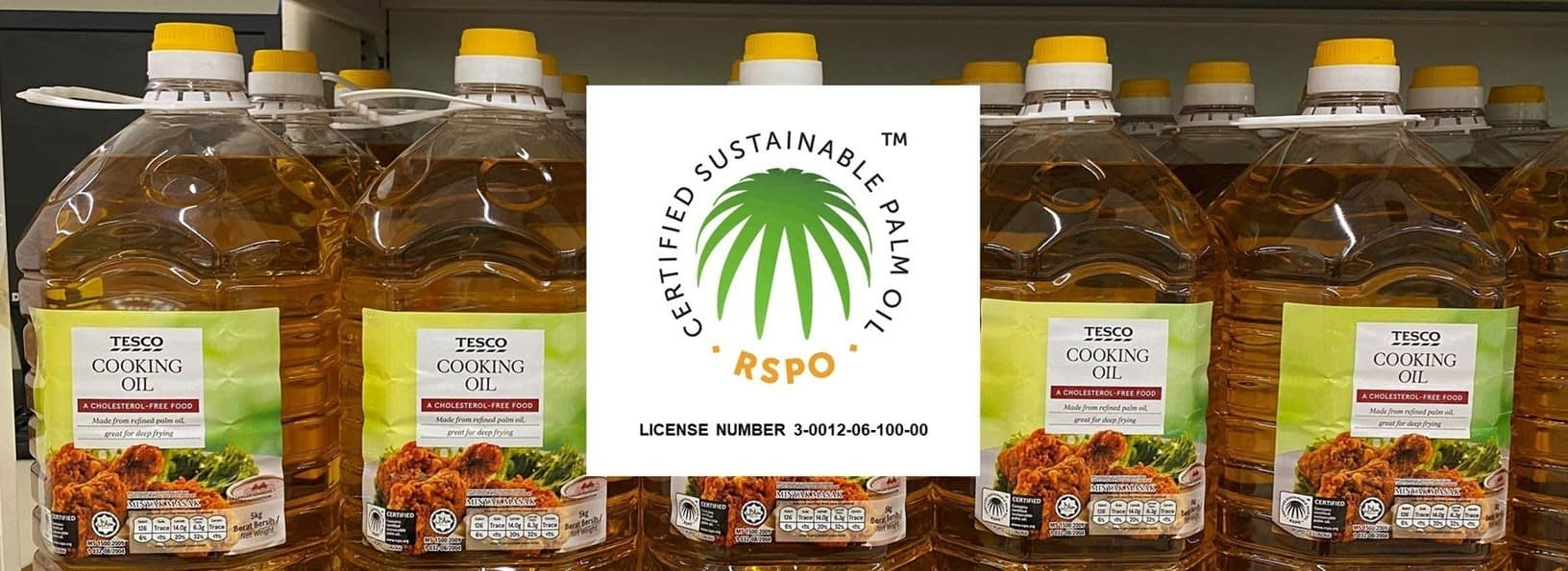 , Update on our progress on sourcing sustainable palm oil – achieving 100% RSPO certification and beyond, TheCircularEconomy.com